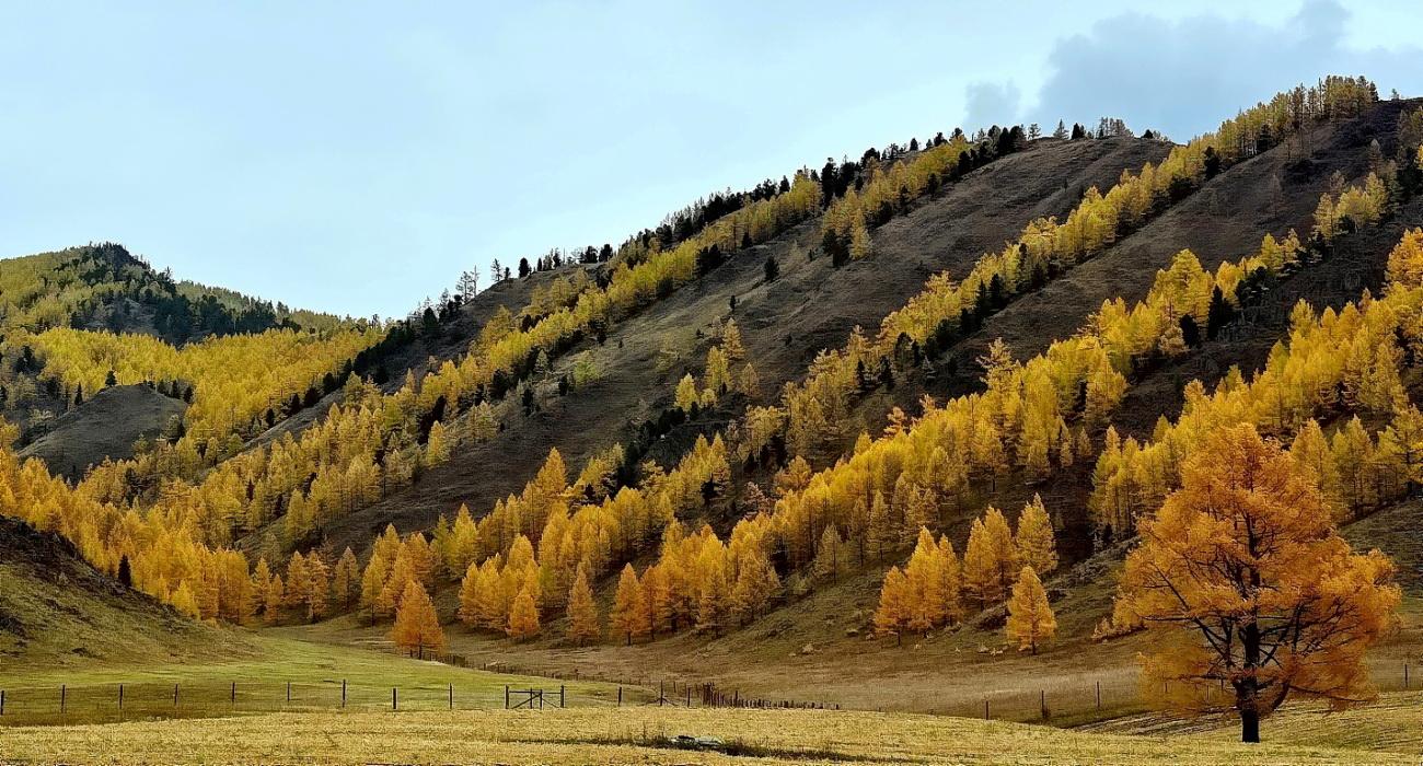 Алтай в октябре.