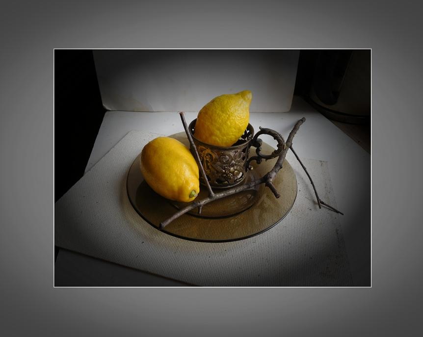 лимоны и веточка дружат с подстаканником
