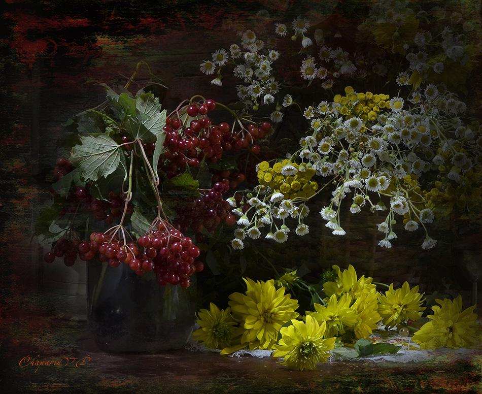 chaparin vp, калина, натюрморт, цветы, ягоды