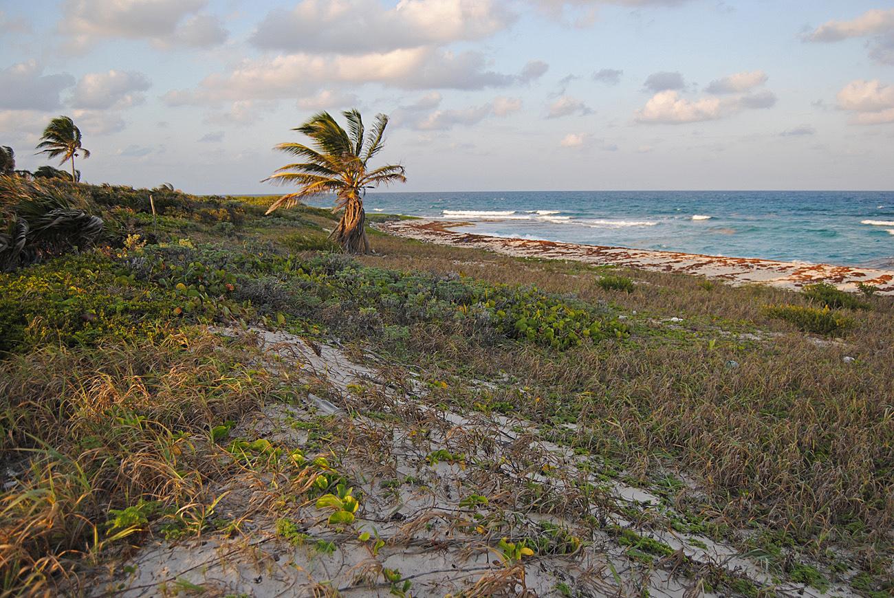 Сиан Каан, Карибское море