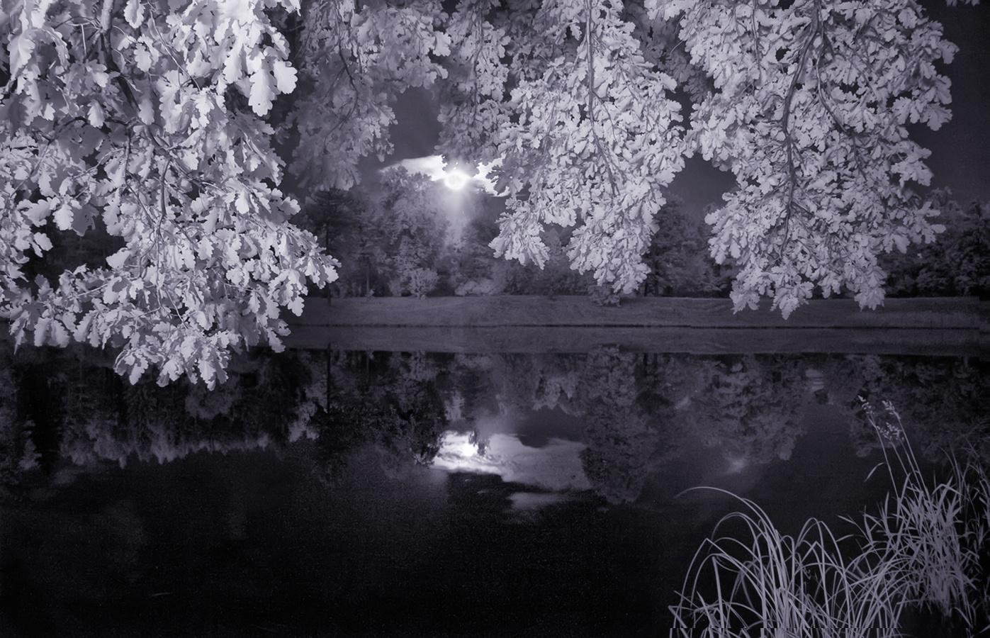 infrared, полнолуние, световая кистьхочу критики