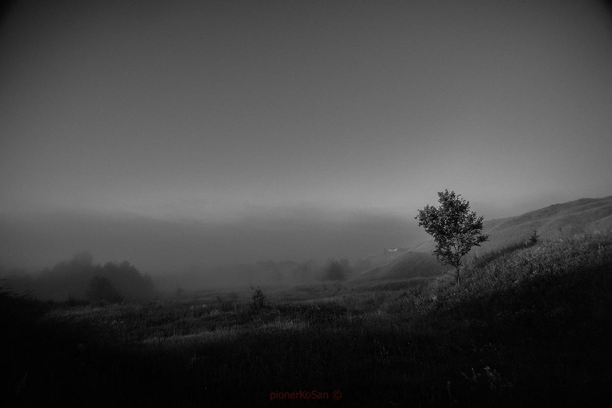 утро туман роса