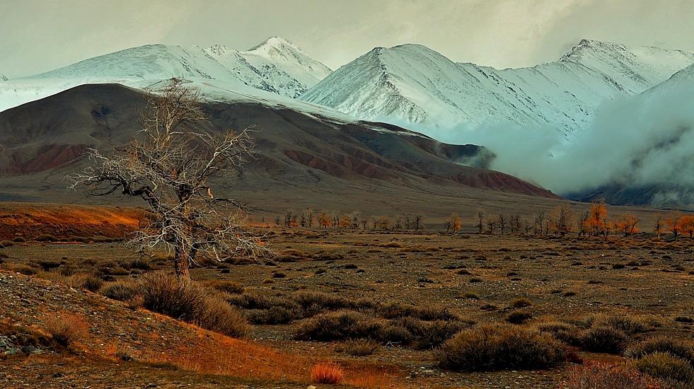 Алтай-17. Седеющие склоны Курая. Чуйская степь. Уходящий сентябрь.