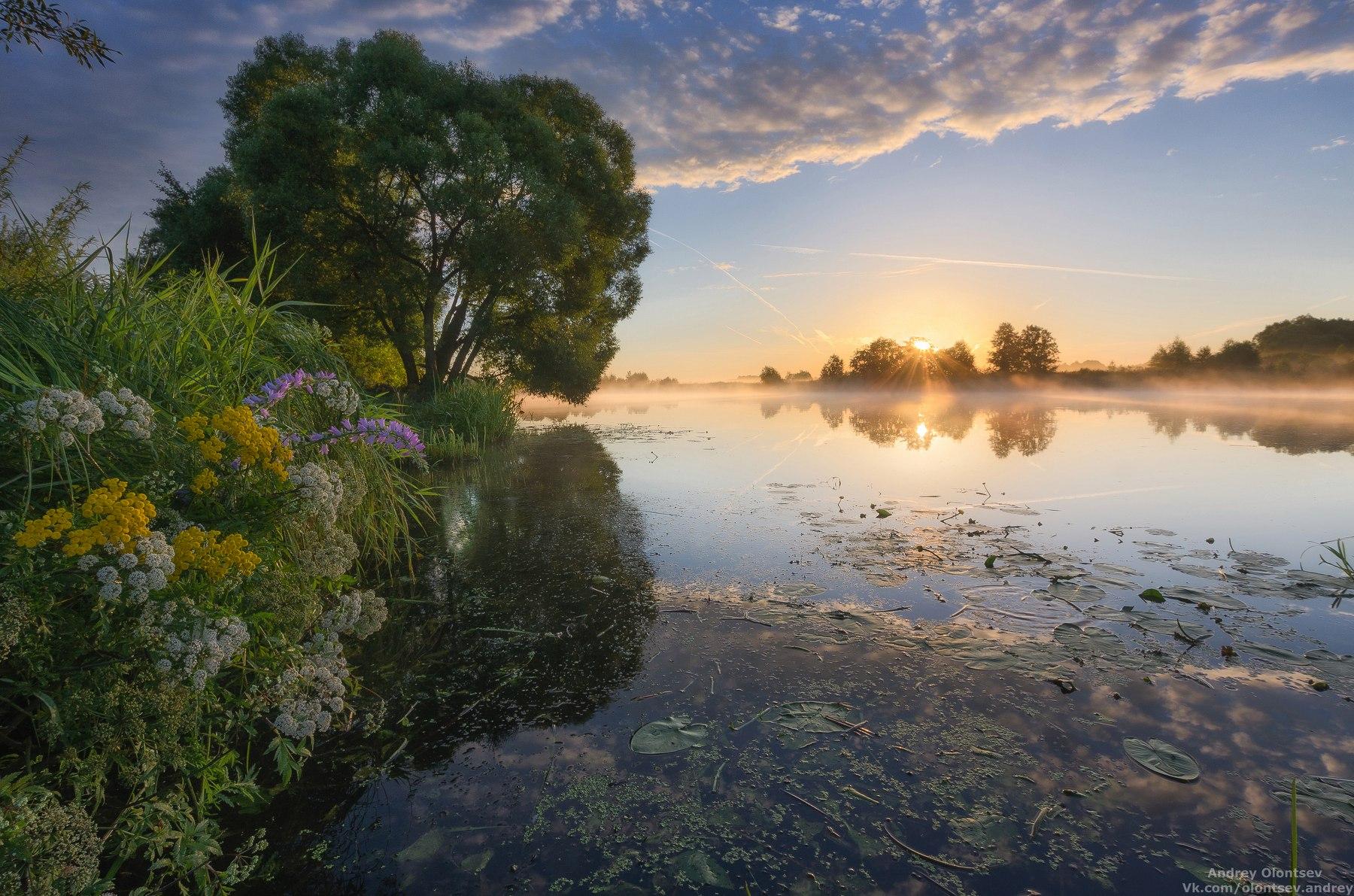 Санаторий-профилакторий Ратмино. Река Дубна.