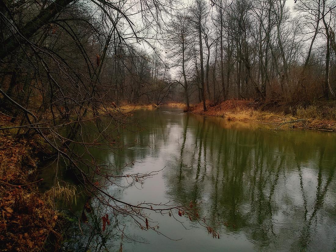 Существует несколько версий происхождения названия реки. По одной из них – от славянского нава – русалка, по другой, скандинавского навья – русалочья.