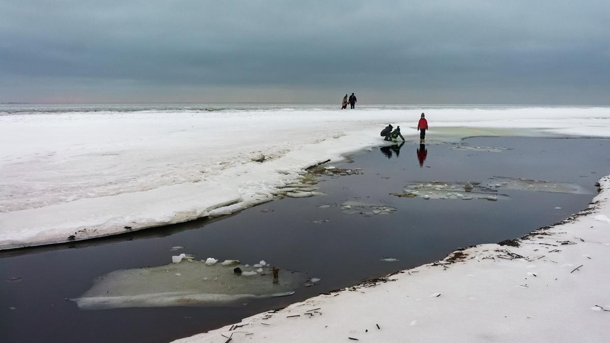 Серые будни января 2018...Финский залив, п.Репино