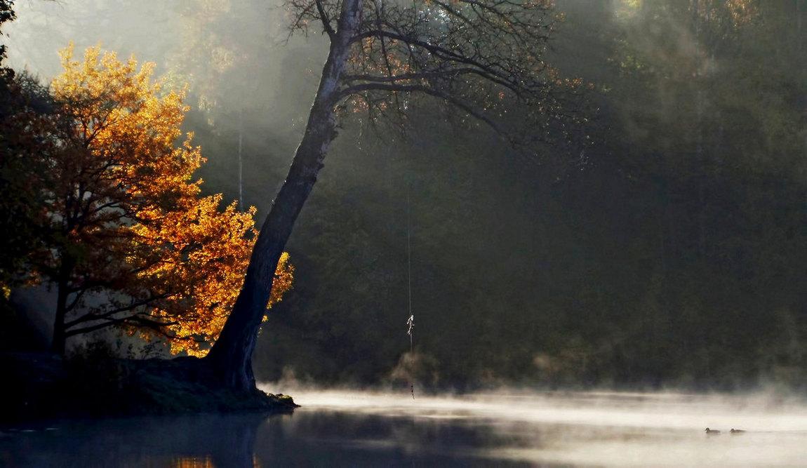 Осиновая Роща. Октябрь