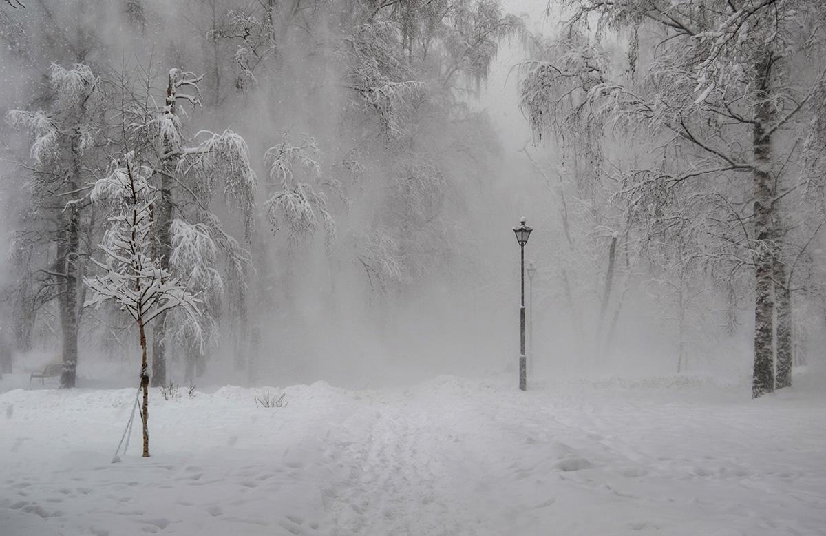 Москва,парк