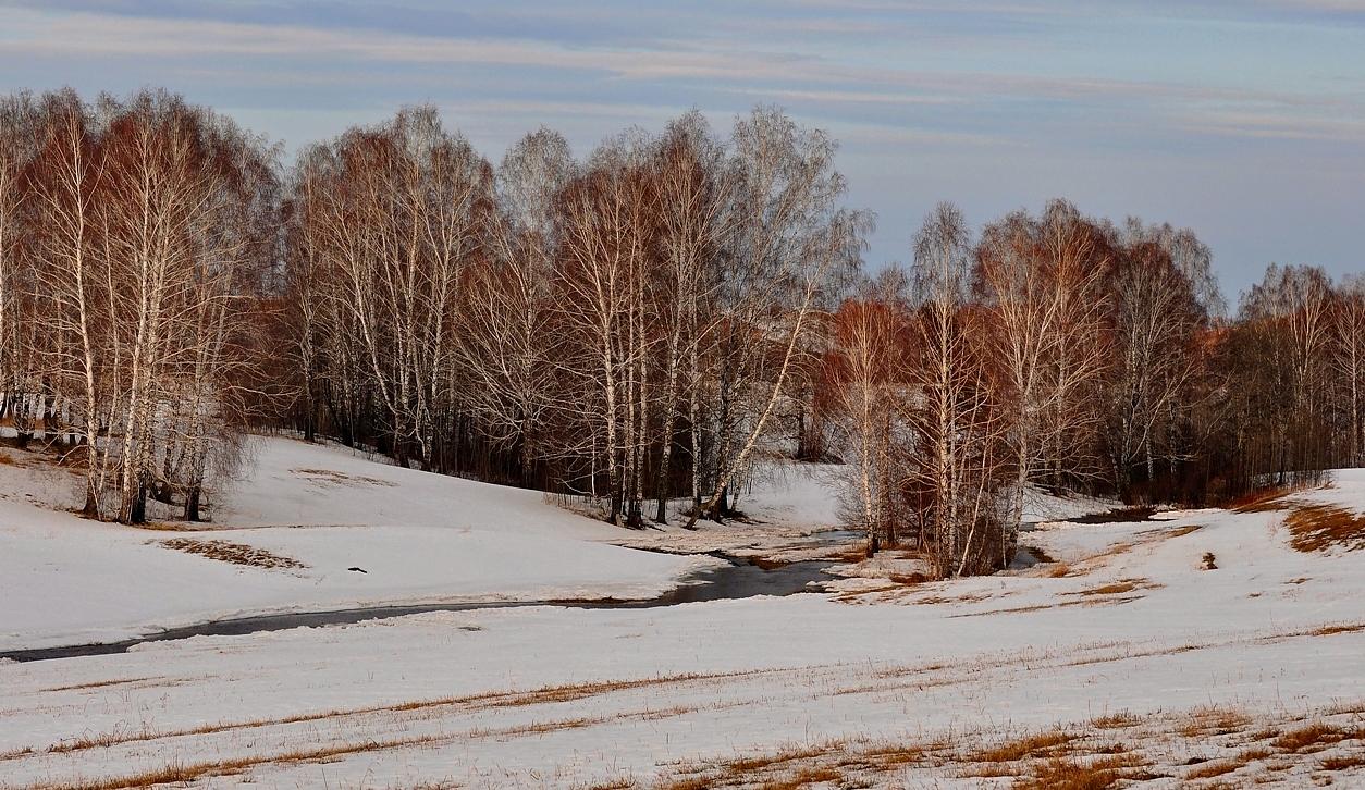 В окно повеяло весною...Засвищут скоро соловьи,И лес оденется листвою!А. Н. ПлещеевПростота,чистота,скромность русской  природы.