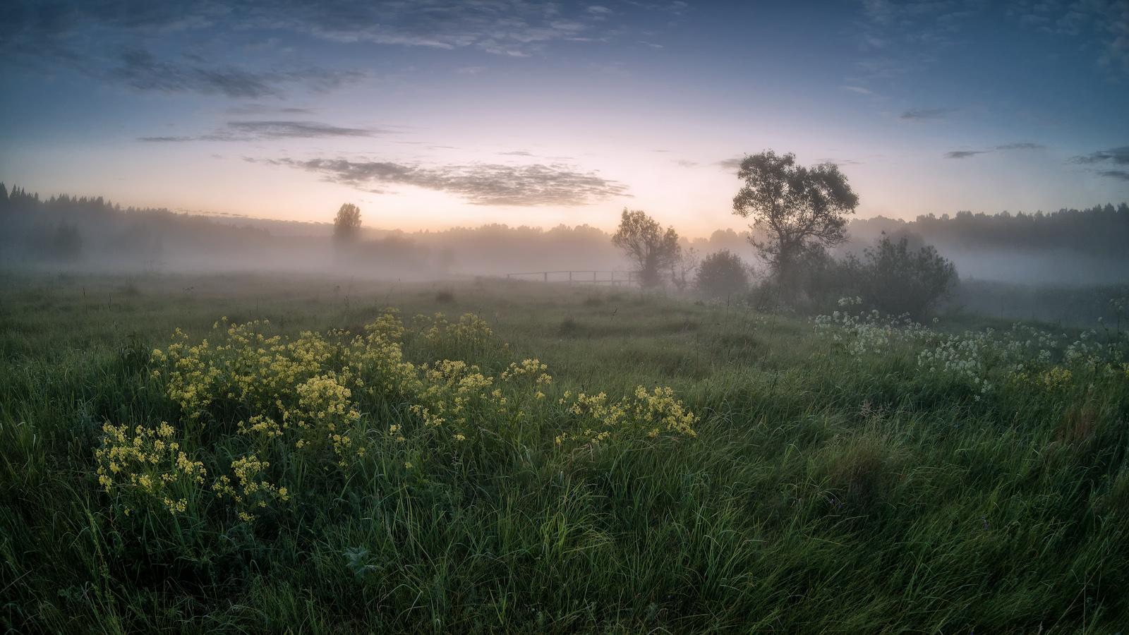 лето, июнь, утроза пол час до восхода