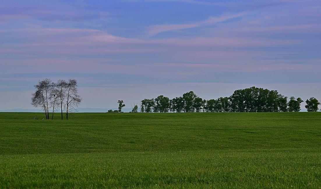 Предалтайская равнина. Вечер.