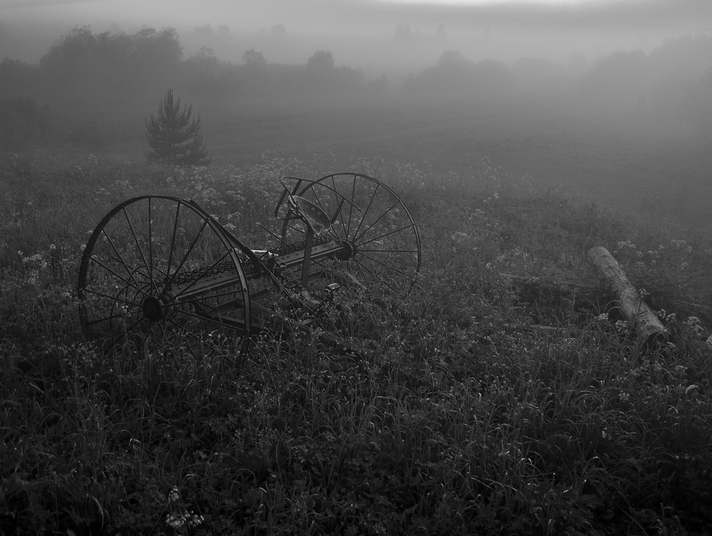 Деревня. Раннее утро. Туман.