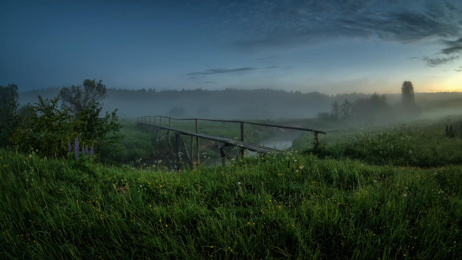 лето, июнь, утромостик на Серой