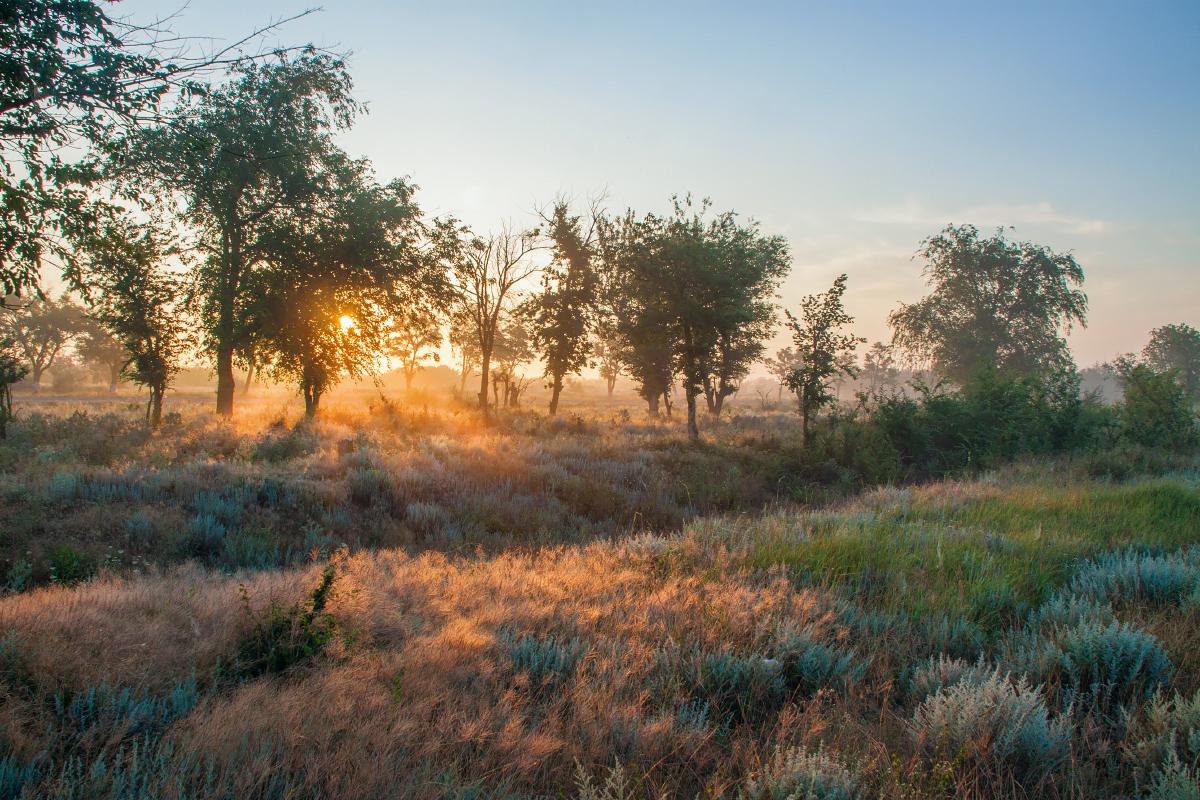 рассвет, утро, туман, Крым