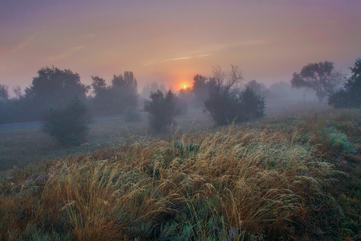 утро, туман, лето, рассвет, Крым