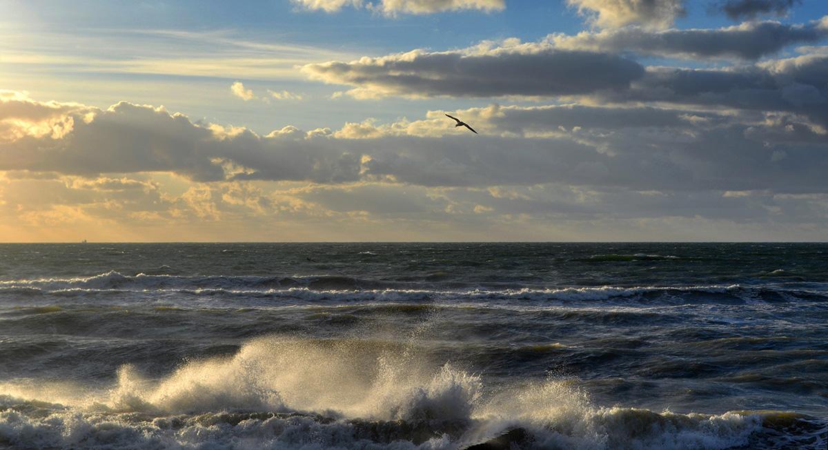 """""""Да, я опять к тебе! Да снова близко я И вновь восторженно тебя пою,О, море милое мое, Балтийское,Ты, воплотившее Мечту мою!""""И.Северянин"""