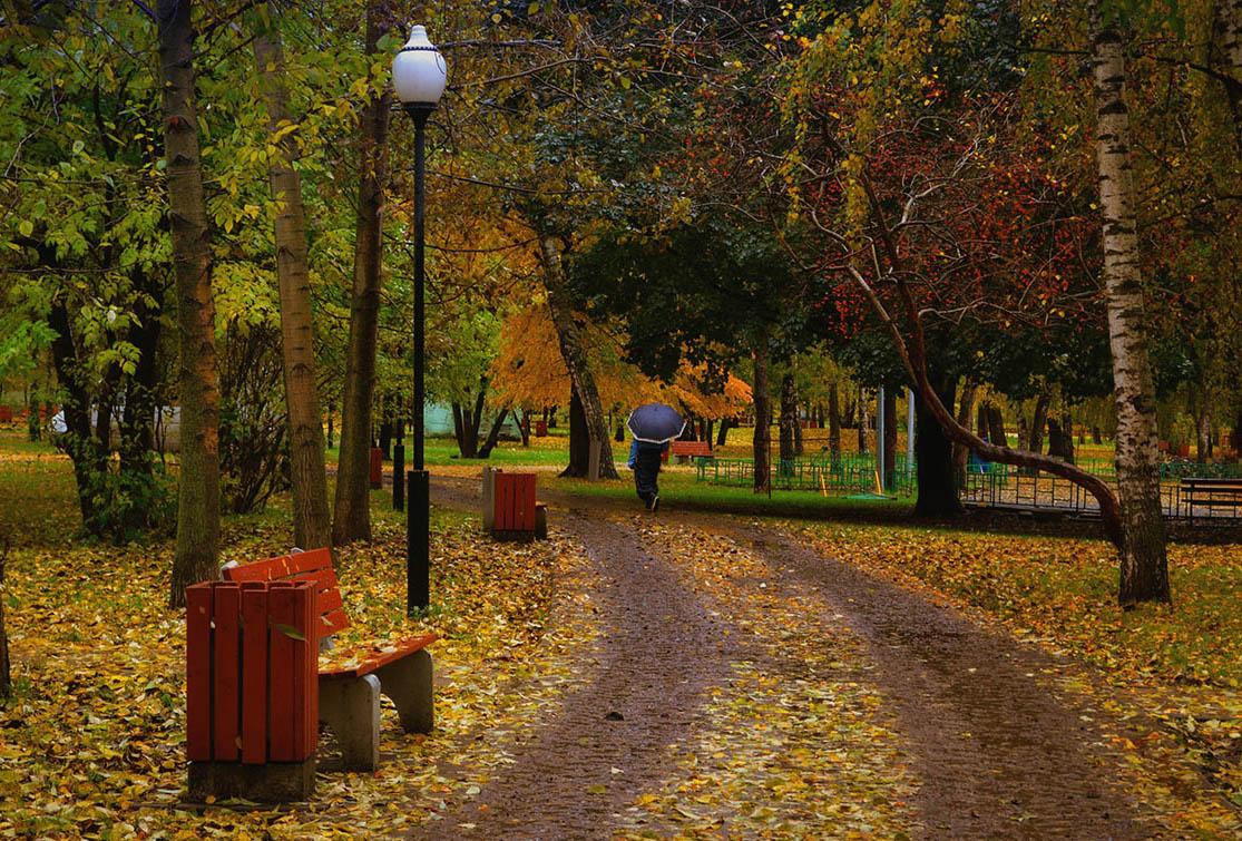 Москва,парк,осень