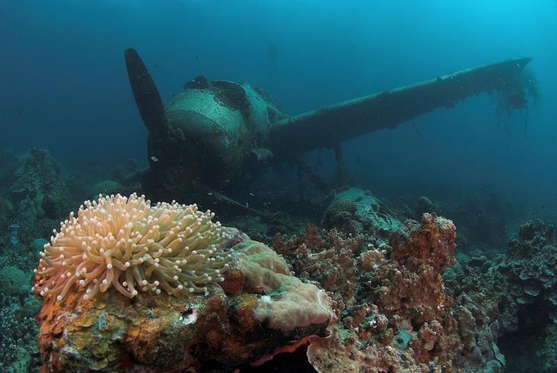Палау. Американский водный самолет, сбитый японцами в 1944