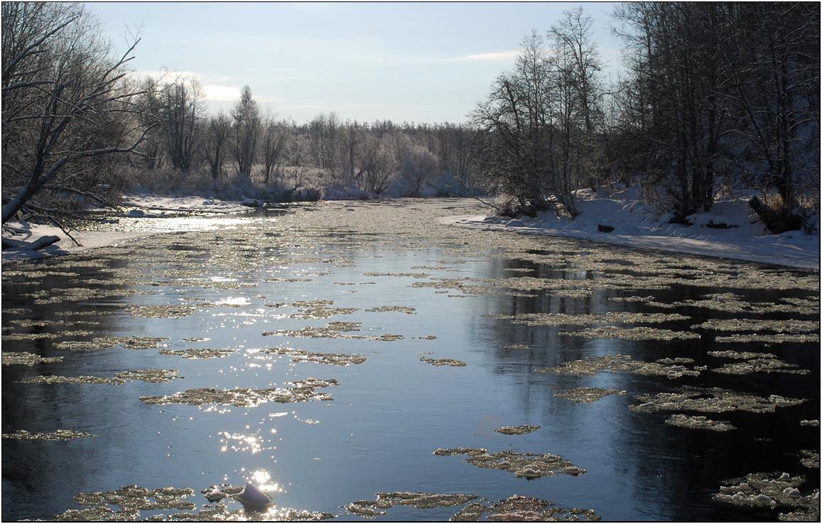 Декабрь. С речки доносится неумолкающий шелест шуги. Еще два-три морозных дня  и установится прочный ледяной покров. Теперь уже до очень далекой весны.