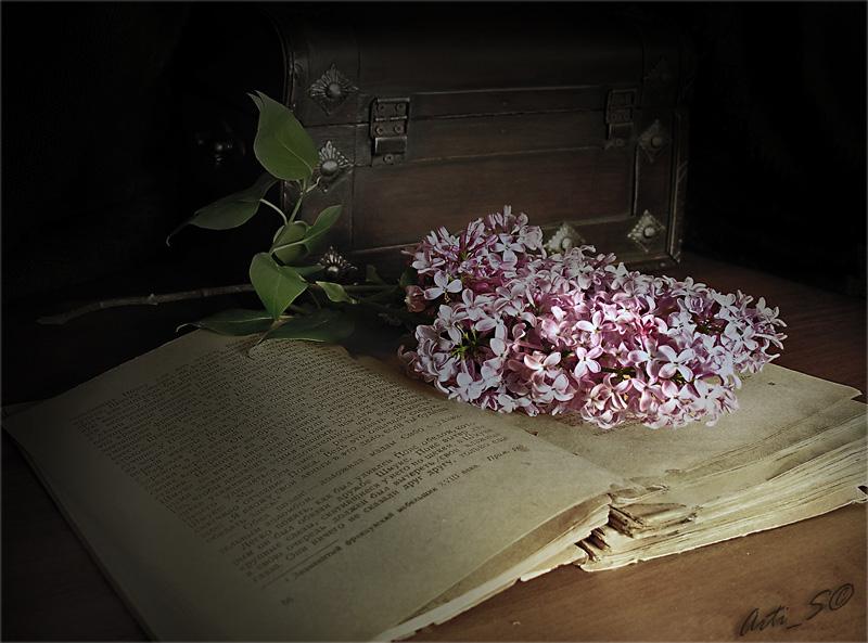 Моя весна, моя душа, ты моя девочка.Моя судьба, моя печаль, сирени веточка.