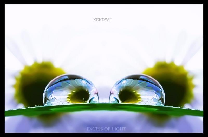 Вода... Цветы... Трава... Свет...