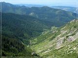Tatry. Dolina Jaworzynkaгоры Татры лес долина
