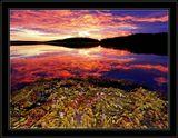 Рассвет, отлив и море.Белое море - 2007