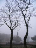 Осень в Таганроге. Сквер Петра I.
