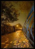 В октябре ночисеяли звездопадыупали листья...(Басе)