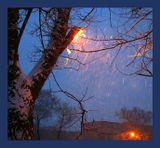 Зимой первый.. Сегодняшний утренний..