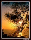 Солнце оправдает, солнце не осудит, Любящее море вновь в него поверит... Это вечно было, это вечно будет, Только силы солнца море не измерит.  Игорь Северянин