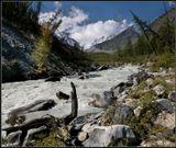 Река Йедыгем. Вытекает из ледника Менсу на Алтае.