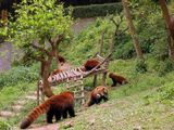 В Китае - апррель 2005
