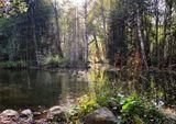 Озеро неглубокое, вода кристально чистая, и с берега прекрасно видно, как в озере резвятся стайки форели.