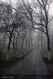 В продолжение фотосессии зимнего Киева. Последний день ХХ века, Киево-Печерская лавра и туман. Canon EOS 5000+Canon EF38-76mm f/4.5-5.6, Kodak Gold 200