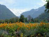 Альпийский горный пейзаж.Дневная съемка 23.05.08