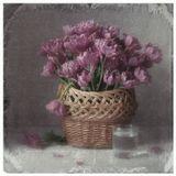 тюльпаны, корзина