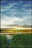 Беларусь Гомель Волотовское озеро Весна