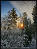О, как же приятно:Средь летней жары,Напиться прохладойС картинки Зимы...----------------------------Февраль месяц. Восход солнца.Бурятия.