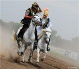 Это старинная казахская забава Кыз-куу: джигит должен догнать на лошади девушку и на полном скаку ее поцеловать. Если ему это не удается, он получает от нее удар камчой. Этот момент вы и видите на снимке.