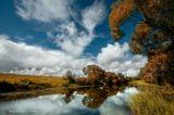 река Протва в Калужской области