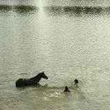 Июльский день. Ни ветерка. Жара.Две девы лишь в реке нашли спасеньеИ с ними конь. Пошла у них играНа радость солнцу, нам на загляденье...