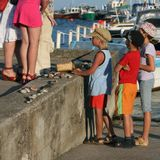 Вот так вот ребятня свои камушки продает :)дети ножки