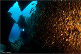 Рэк - затонувший объект (от англ. - wreck). Красное море. Риф Abu Galawa. Затонувшее рыбацкое судно. Модель - Корвин (http://www.photodom.com/photographer/victorovich).
