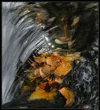 Осенний теплый денек на берегу горной речки. Бурятия.