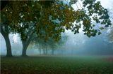 """""""Осень уже пришла!"""" — Шепнул мне на ухо ветер, Подкравшись к постели моей. (с) БАСЁ"""