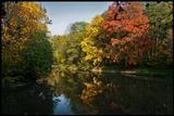 Ослепительная осень в Тимирязевском парке, в Москве.