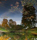 тихо грустила осень, уходя...осень листва деревья отражения