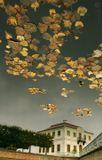 Петергоф осенью