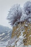 С заоблачных, заснеженных высот,Где снег не тает даже летом,Зима стремительно идет,Все освещая белым светом!